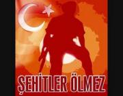 Mehmet Şehit